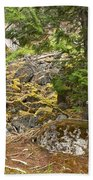 Rainforest Rock Slide Beach Towel
