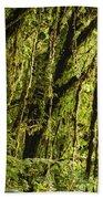 Rainforest Vines Beach Towel