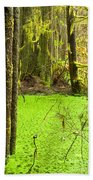 Rainforest Wetland Wildernis Of West Coast Bc Beach Towel