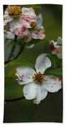 Rainy Day Dogwood Beach Towel