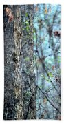 Rainy Day In The Forest Beach Towel