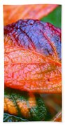 Rainy Day Leaves Beach Towel