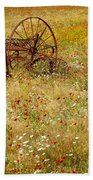 Ranch And Wildflowers And Old Implement 2am-110546 Beach Towel