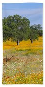 Ranch And Wildflowers And Old Implement 2am-110556 Beach Towel
