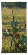 Ranch Cactus Beach Towel