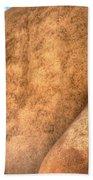 San Francesco De Asis, Rancho De Taos I Beach Towel