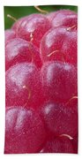 Raspberry Beach Towel