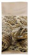 Rattlesnake 1 Beach Towel