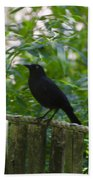 Raven In The Wild Beach Towel