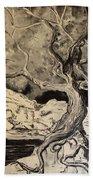Ravenlight Tree Beach Towel