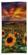 Rays Of Sunflowers Beach Towel