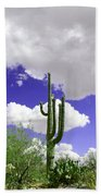 Reach Out And Touch The Sky Beach Towel