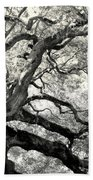 Reaching For Heaven Beach Towel by Karen Wiles
