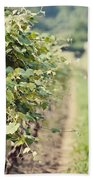 Ready For Harvest  Beach Towel by Lisa Russo