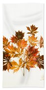 Reconstructed Full Moon Maple Beach Towel