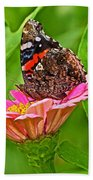 Red Admiral Butterfly And Zinnia Flower Beach Towel