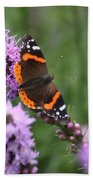 Red Admiral Butterfly On A Blazing Star Beach Towel