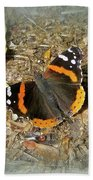 Red Admiral Butterfly - Vanessa Atalanta Beach Towel