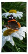 Red Admiral On A Daisy Beach Towel