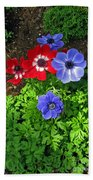 Red And Blue Anemones Beach Towel