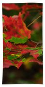 Red And Green Autumn Leaves Beach Towel