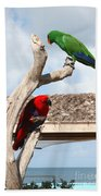 Red And Green Parrots Beach Towel