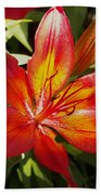 Red And Orange Lilly In The Garden Beach Towel