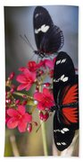 Red And White Longwing Butterflies  Beach Towel