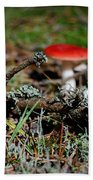 Red And White Mushrooms Beach Towel