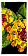 Red And Yellow Lantana Flowers With Green Leaves Beach Towel