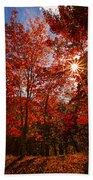 Red Autumn Leaves Beach Towel