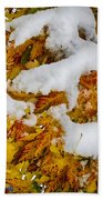 Red Autumn Maple Leaves With Fresh Fallen Snow Beach Towel