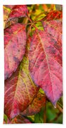 Red Autumn Beach Towel