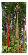 Red Bamboo Beach Towel
