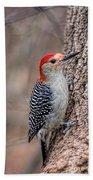 Red Bellied Woodpecker Beach Towel