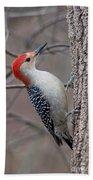 Red Bellied Woodpecker Pose Beach Towel
