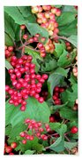 Red Berries And Green Leaves Beach Towel