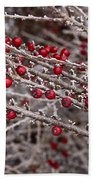 Red Berries Covered In Snow Beach Towel