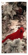 Red Bird In A Snow Covered Tree Beach Towel