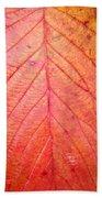 Red Blackberry Leaf Beach Towel