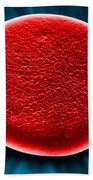 Red Blood Cell Sem Beach Towel