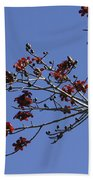 Red Blossoms Beach Towel