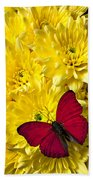Red Butterfly On Poms Beach Towel
