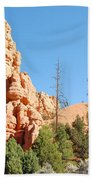 Red Canyon 2 Beach Towel