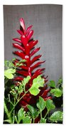 Red Cone Ginger - No 1 Beach Towel