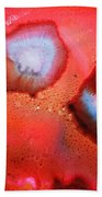 Red Cosmos Beach Towel