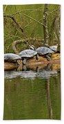 Red Eared Slider Turtles 2 Beach Sheet