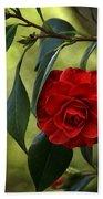 Red Elegance Beach Towel
