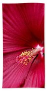 Red Flower 2 Beach Towel