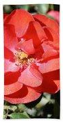 Red Flower I Beach Towel